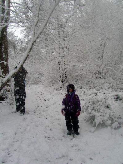 Re-exposure of Snow 2013 038